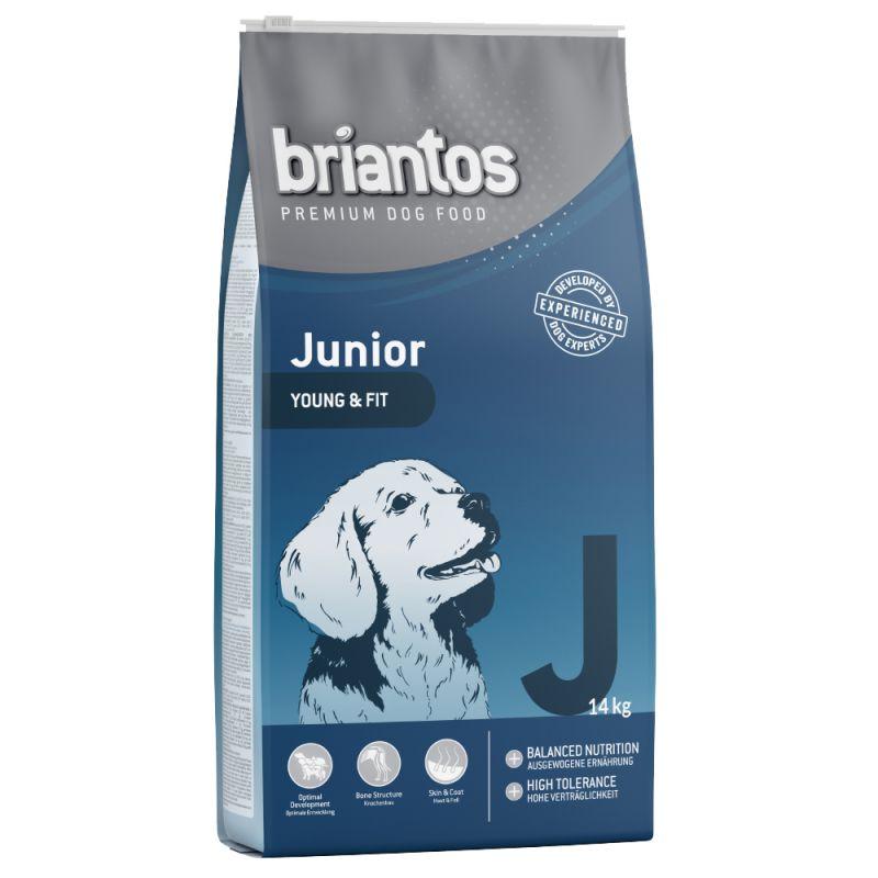 Briantos Junior Young & Care - Single Protein