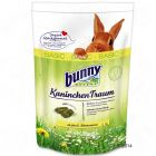 Bunny Rabbit Traum BASIC