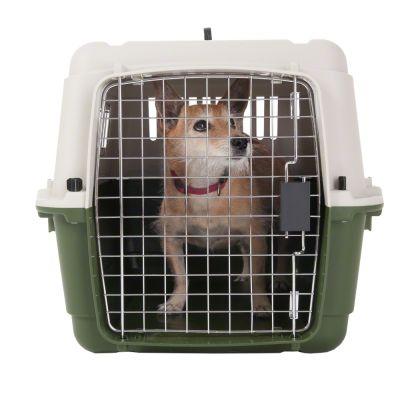grande cage de transport classique pour chien prix. Black Bedroom Furniture Sets. Home Design Ideas