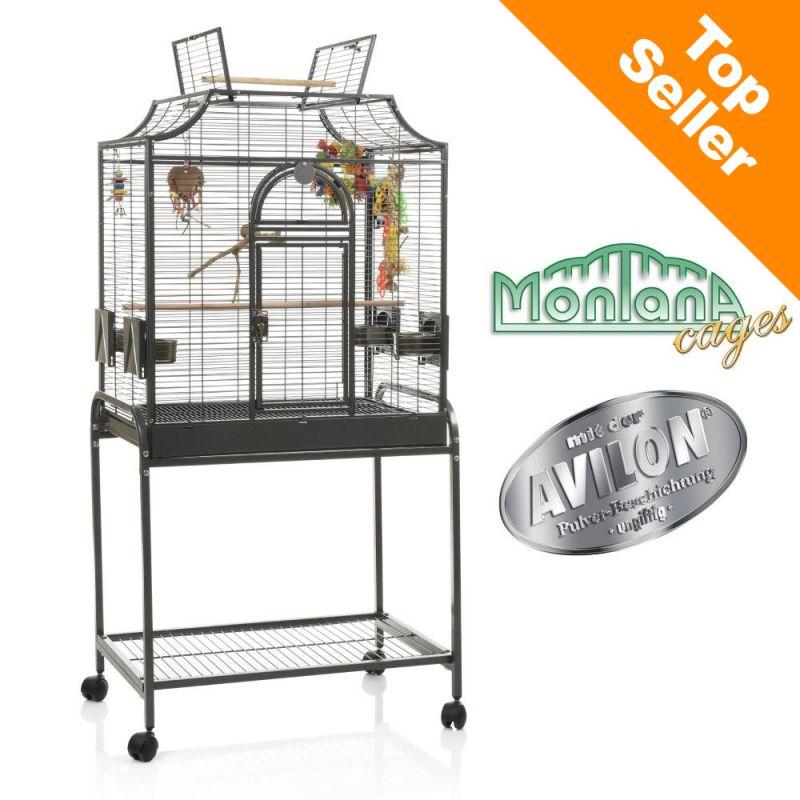 hello tout le monde 43987_cage_montana_madeira_1_top_seller_07102019_3