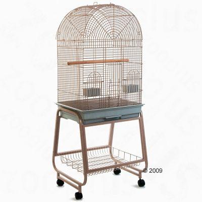 pick up wide range factory outlets Cage pour perruche et petit perroquet Antico