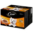 Cesar Pouches Deliciously Fresh Favourites in Sauce 24 x 100g