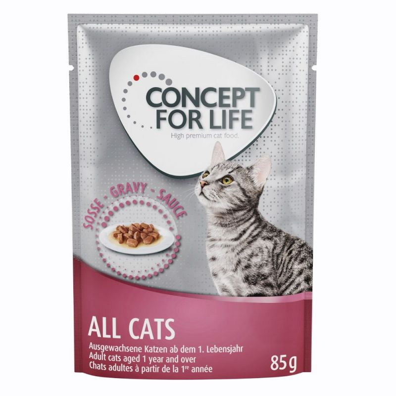 Concept for Life All Cats - i sås