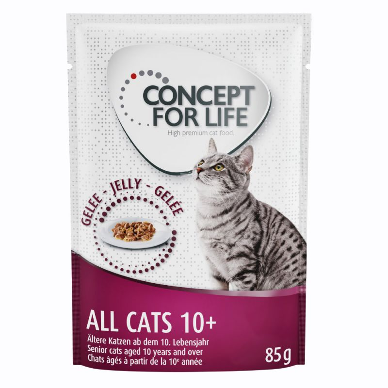 Concept for Life All Cats 10+ - in Jelly