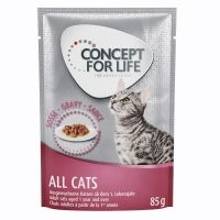 Concept for Life All Cats - in Soße