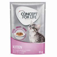 Concept for Life Kitten – in Gravy