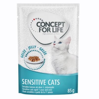 Concept for Life Sensitive Cats – in Jelly