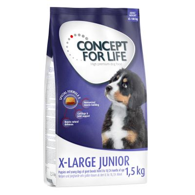Concept for Life X-Large Junior