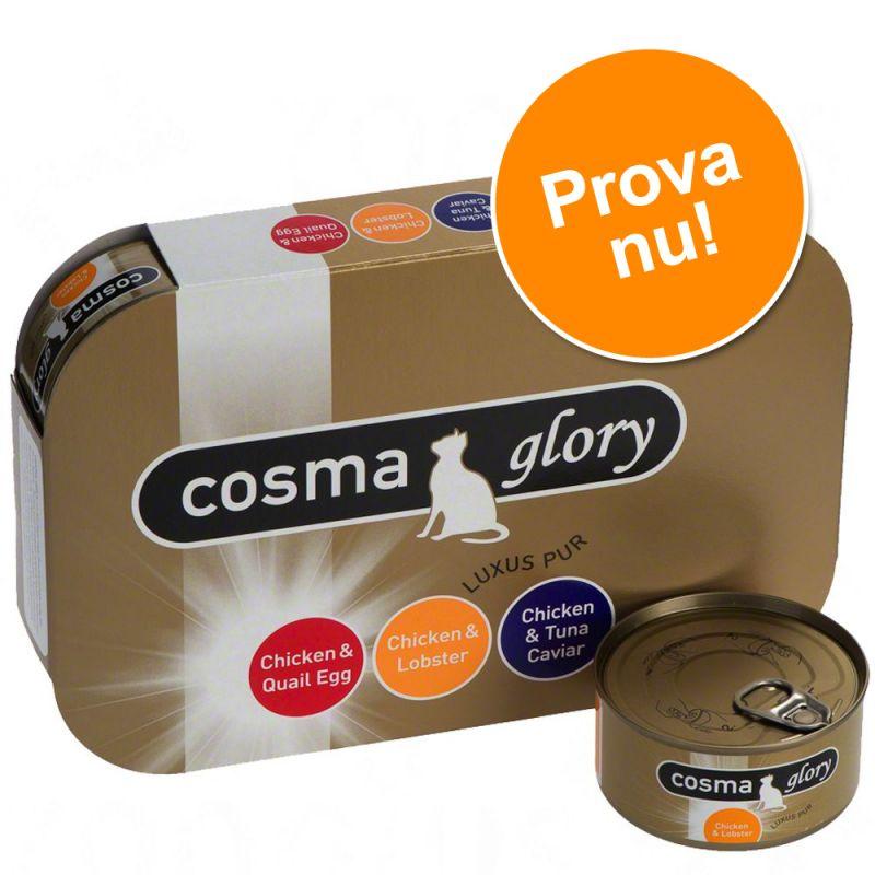 Cosma Glory i gelé blandpack