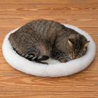 Cosy 2-in-1 Pet Bed