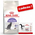 Croquettes Royal Canin 4 / 10 kg + sachets 4 x 85 g offerts !