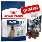 Croquettes Royal Canin Size + 180 g friandises Wolf of Wilderness en cadeau !