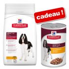 Croquettes Hill's Science Plan 12 kg + boîtes Hill's Science Plan 3 x 370 g offertes !