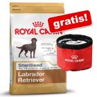 Croquettes Royal Canin Breed + gamelle de voyage Waterproof en cadeau !