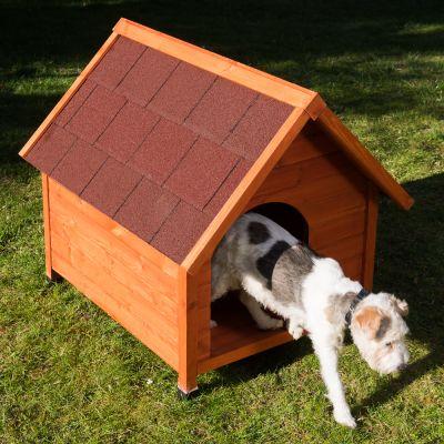 Cuccia Per Cani Spike Eco Premium Zooplus