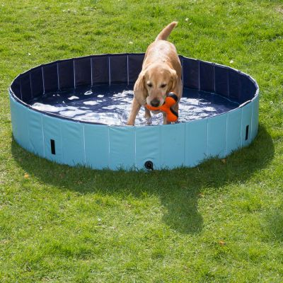 Attraktiva Dog Pool hundpool | zooplus.se AF-41