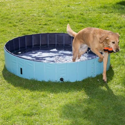 Doggy Paddling Pool - S
