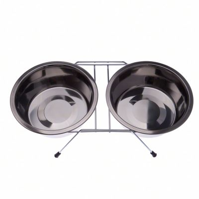 Dual Stainless Steel Dog Bowl on Stand