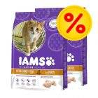Dubbelpack: IAMS Pro Active Health Kitten & Junior