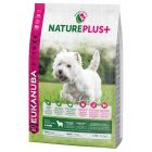 Eukanuba NaturePlus+ Adult Small Dog Lamm