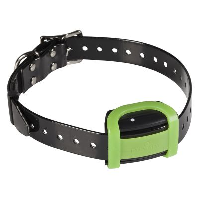 collier dressage chien spray zooplus