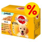 Fai scorta! Pedigree Junior Buste