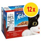 Felix Pouches in Gelee 12 x 100 g