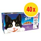 Felix Pouches in Gelee 40 x 100 g