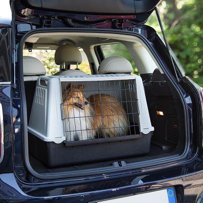 Ferplast Atlas Mini Car Transport Crate Free Pp 29 At Zooplus