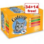 100g Catessy Pouches Wet Cat Food - 34 + 14 Free!*