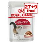 85g Royal Canin Wet Cat Food Pouches - 27 + 9 Free!*