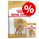 Gemengd pakket: Royal Canin Breed Hondenvoer - Poodle Adult