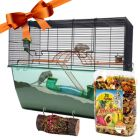 Gift Set: Nibble Log & Fruity Fun