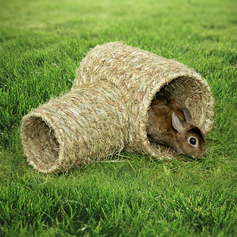 Grass Tunnel