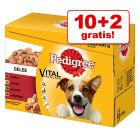 10 + 2 gratis ! 12 x 100 g Multipack Pedigree Vital Protection