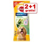 2 + 1 gratis! Pedigree Dentastix Fresh daglig frisk pust