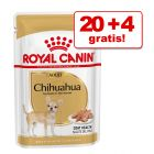 20 + 4 gratis! Royal Canin Breed w saszetkach, 24 x 85 g