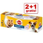 2 + 1 gratis! 3 stuks Pedigree Dentastix Twice Weekly