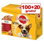 100 + 20 gratis! 120 x 100 g Multipack Pedigree