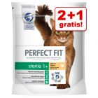 2 + 1 gratis! 3 x 750 g Perfect Fit - Reich an Huhn