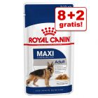 8 + 2 gratis! 10 x 140 g Royal Canin Maxi / Medium mokra hrana