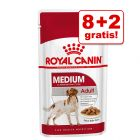 8 + 2 gratis! 10 x 140 g Royal Canin Medium / Maxi