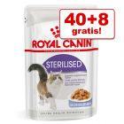 40 + 8 gratis! 48 x 85 g Royal Canin portionsposer