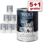 5 + 1 gratis! 6 x 400 g Wolf of Wilderness Nassnahrung