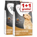 1 + 1 gratis! 2 x 1,5 kg Concept for Life Golden Retriever Adult