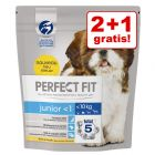 2 + 1 gratis! 3 x 1,4 kg Perfect Fit Small Dogs