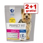2 + 1 gratis! 3 x 1,4 kg Perfect Fit Small Dogs (<10 kg)