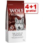 4 + 1 gratis! 5 x 1 kg Wolf of Wilderness misto