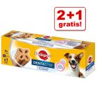 2 + 1 gratis! 3 x Pedigree Dentastix 2 x ukentlig (Dentaflex)