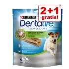 2 + 1 gratis! 3 x Purina Dentalife Snacks